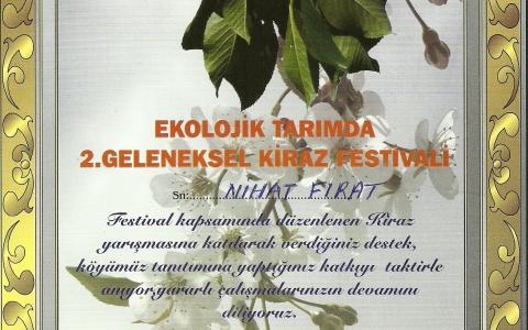 Festival Katılım